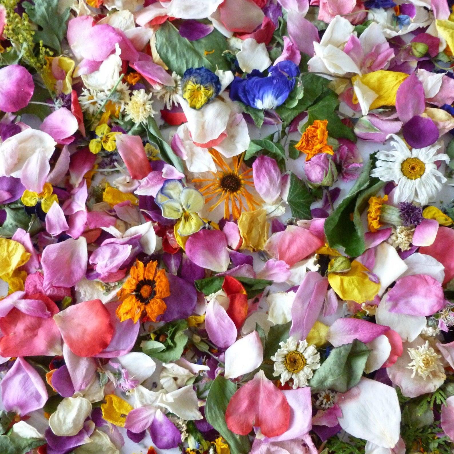 Bulk Wedding Confetti Dry Flowers