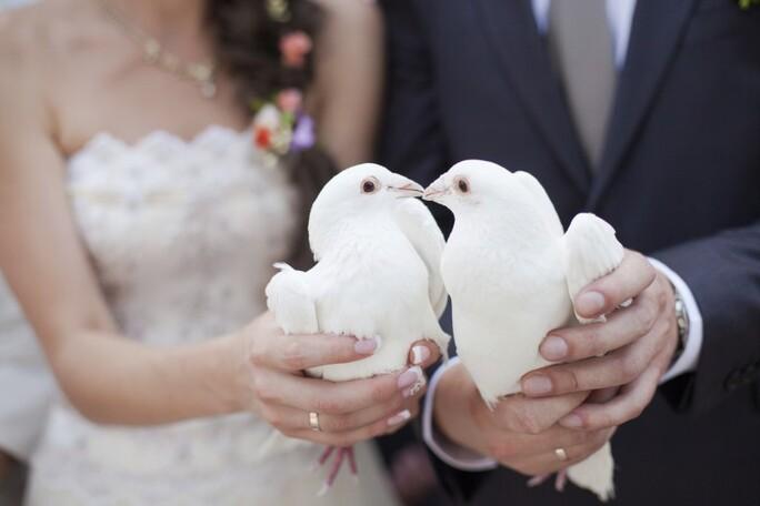 White doves wedding release