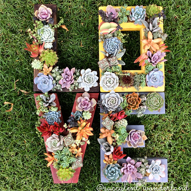 Monogrammed Succulent Planter | 5 Handmade Succulent Goodies to Include in Your Wedding