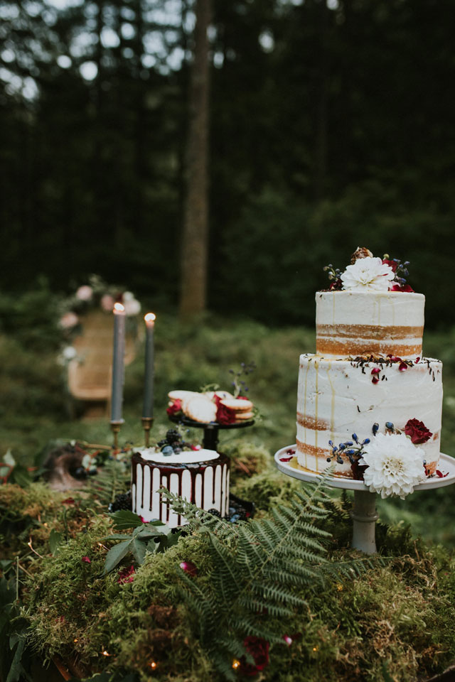 A dramatic and moody wolf elopement styled shoot against a natural backdrop of waterfalls and lush forested landscape by Marcela Pulido Photography and Vintage Mingle