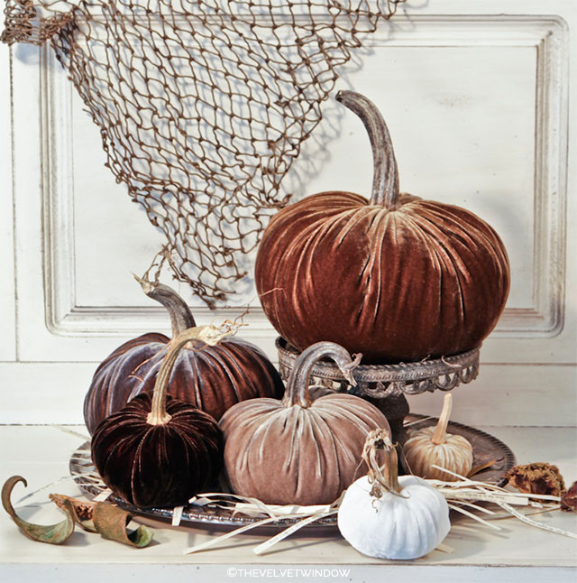 Six Neutral Velvet Pumpkins with Real Pumpkin Stems by TheVelvetWindow on Etsy | Wedding Decor and Accessories for a Handmade Fall Wedding