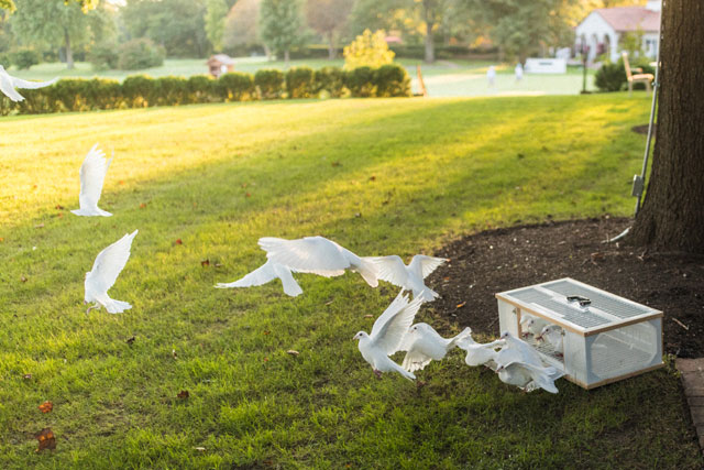 Country club rehearsal dinner with ice sculptures and a dove release by Alec Vanderboom