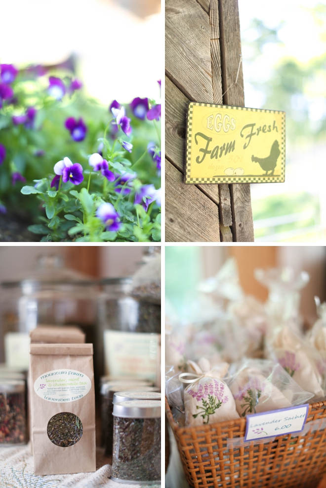 Lavender Farm Anniversary Shoot by Amy Rizzuto Photography