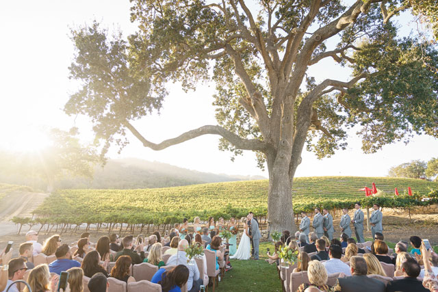 A picturesque Hammersky Vineyards wedding at sunset by Bergreen Photography