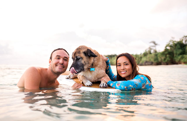 A romantic and tropical engagement session on Saipan with the couple's dog and paddle boarding by Lauren Benson Photography