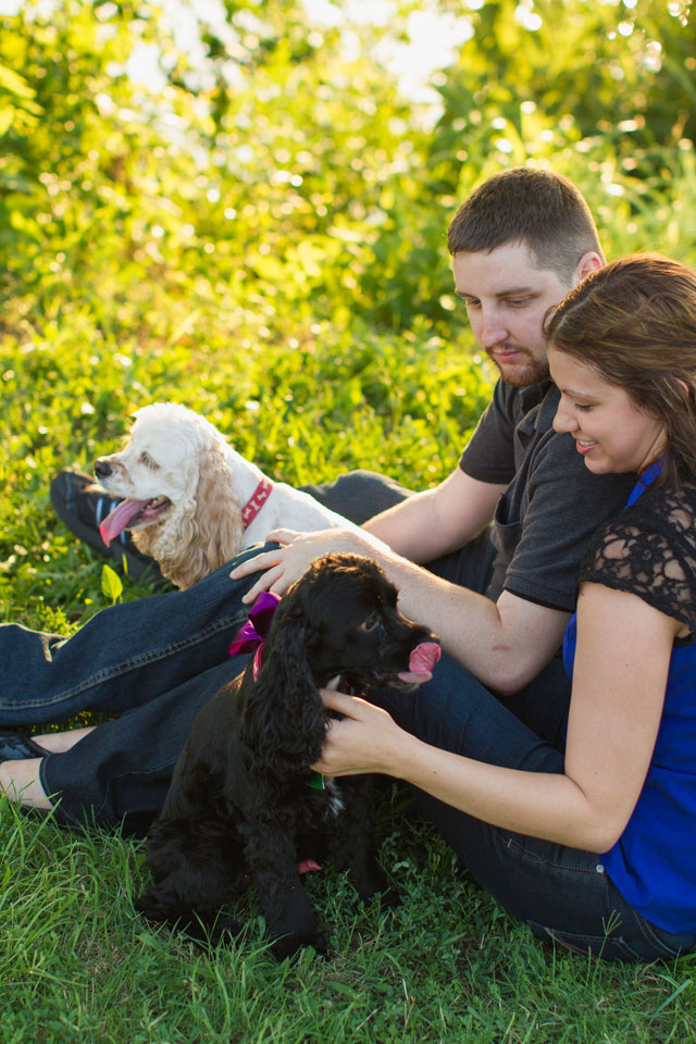 A romantic sunset lake engagement session with the couple's adorable dogs // photo by Robyn Icks Photography: http://robynicksphotography.com || see more on https://blog.nearlynewlywed.com